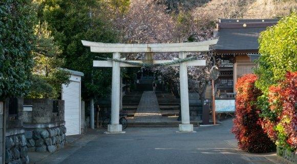 高麗神社 年間約40万人の参拝がある歴史ある神社です。出生にご利益があると言われ、「出生明神」として有名です。秋にはここを起点に奥武蔵林道などを走るマラソン大会が開催されています。
